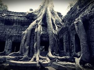 cambodia (14)